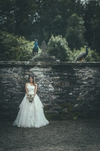 Bride by the wall with birds